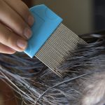 Lice-Comb-On-Wet-Hair-Or-On-Dry-Hair